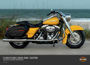 harley-davidson flhrs i road king custom-44488