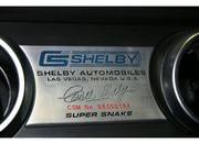 ford shelby gt500 super snakes-252292