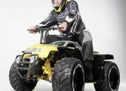 3z scale bulldog r c rider transforms into quad-290520