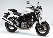2010 suzuki model range by duff 5