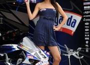 miss yamaha racing 2009 picture gallery-330131