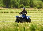 yamaha grizzly 125 automatic-422187