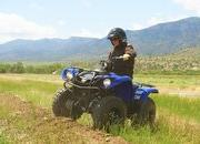 yamaha grizzly 125 automatic-422199