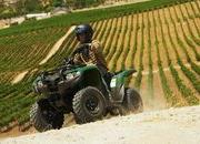 yamaha grizzly 300 automatic-422040