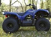 yamaha grizzly 125-461021